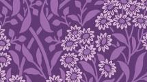 Flores violetas en racimo