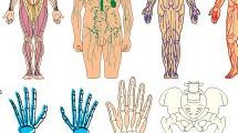 Set cuerpo humano