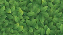 Textura con hojas