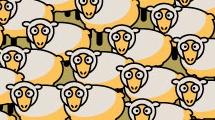 Fondo con ovejas