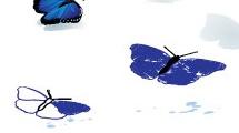 Mariposas en vuelo