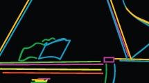 Piano multicolor