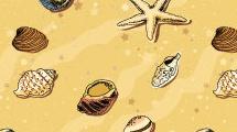 Playa con caracoles