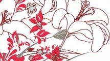 Ramo de orquídeas