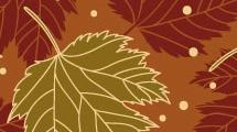 Fondos: otoño