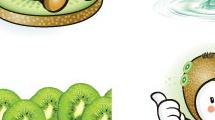 Set frutal: kiwi