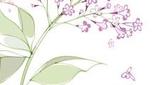 Vara de lilas