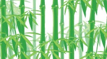 Ramas de bambú