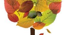 Árbol y otoño