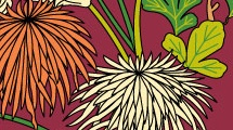 Crisantemos anastasia