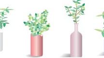 Set de flores y plantas