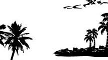 Set con palmeras