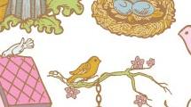 Ilustraciones de pájaros
