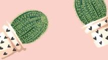 Macetas con cactus