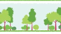 Banners con árboles