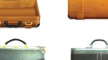 Portafolios y valijas