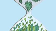 Filtración de un virus en la naturaleza