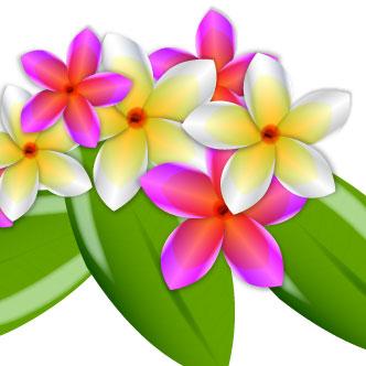Vector Gratis De Flores Estilo Hawaiano