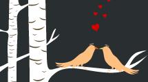 Amor de Pájaros