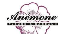 Logo Anemone fleurs et cadeaux