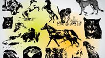 Animales en negro