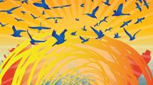 Aves en cielo naranja