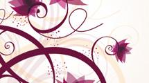 Banner con flores y swirls sobre blanco