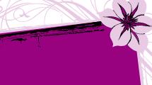 Banner Violeta
