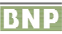 Logo Banque Nationale de Paris