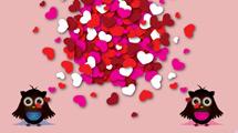 Búhos de San Valentín