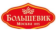 Logo Bolshevik