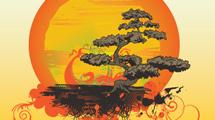 Bonsai con diseño naranja detrás