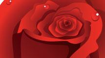Borde rosas rojas