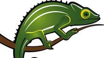 Camaleón verde en rama
