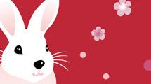 Conejo con flores