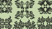 Conjunto de vectores de elementos florales