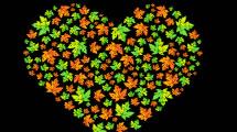 Corazón de Otoño
