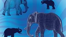 Cuatro elefantes vectoriales