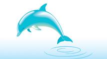 Delfín saltando del agua