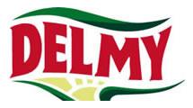 Logo Delmy