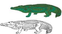 Dibujos de reptiles