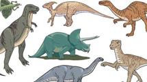 Dinosaurios a color