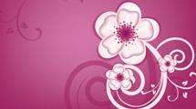 Diseño de fondo rosa con flores blancas y texto
