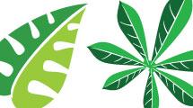 Diseño de hojas