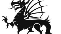 Dragón negro para tatuaje