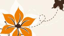Flor naranja y mariposa