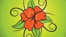 Flor roja con bordes negros