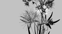 Flores Abstractas 2
