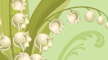 Flores campanitas