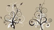Flores en marrón